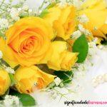 el mejor arreglo de rosas