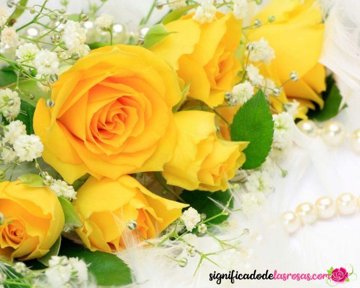 imágenes de flores amarillas hermosas