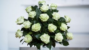 ramo de rosas verdes naturales