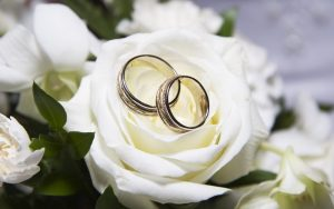 rosas blancas y dos anillos
