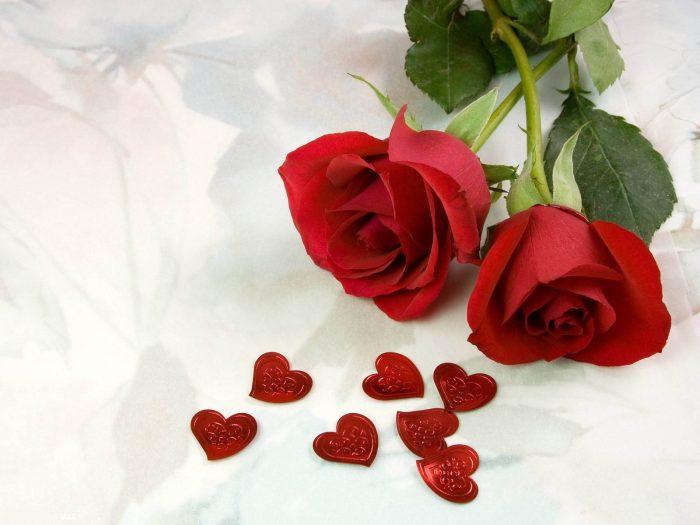 rosas rojas y corazones