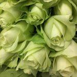 arreglo florar con rosas verdes