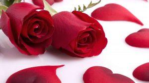 rosas con corazones