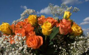 rosas anaranjadas y amarillas